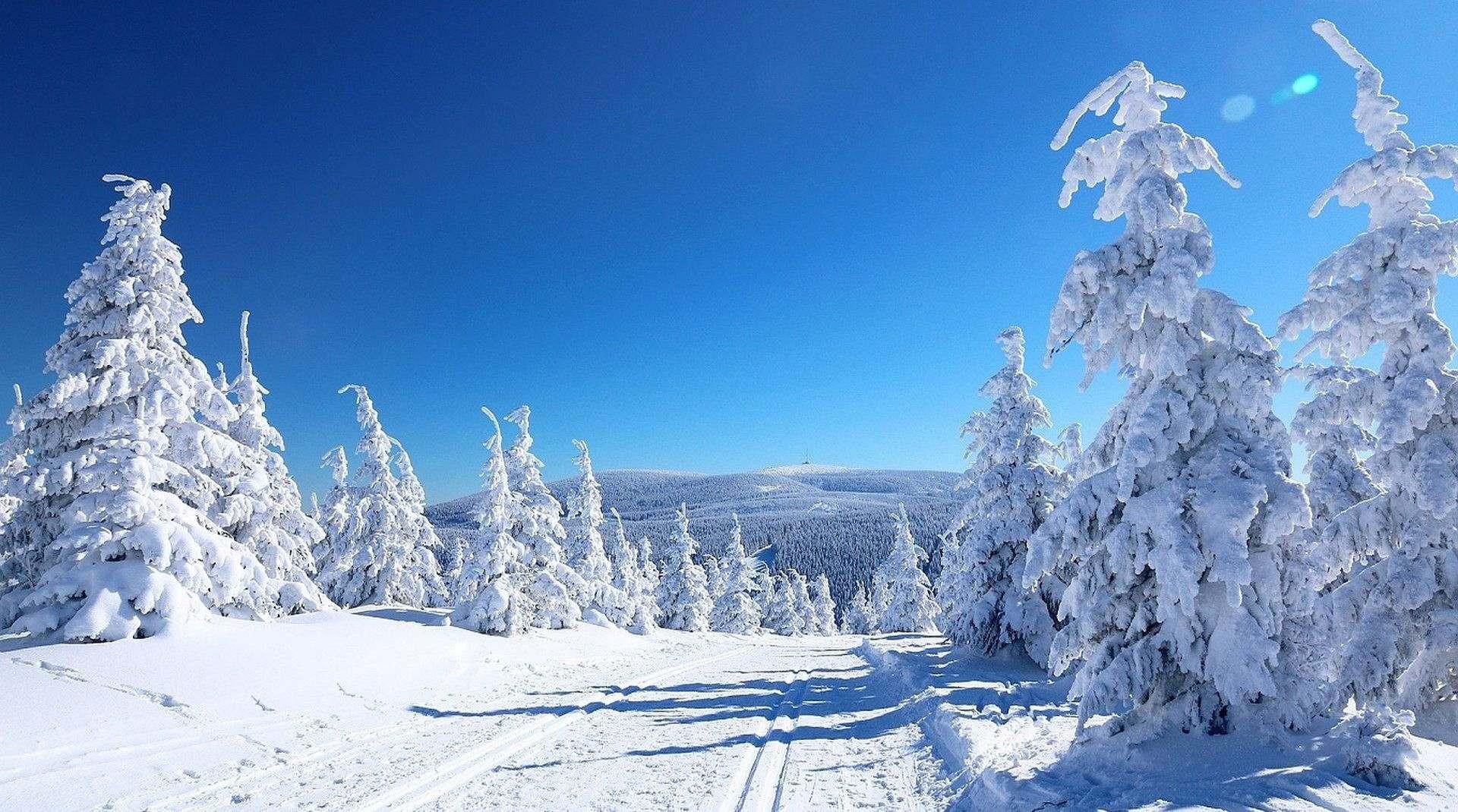 Plánujete výlet v zimě?